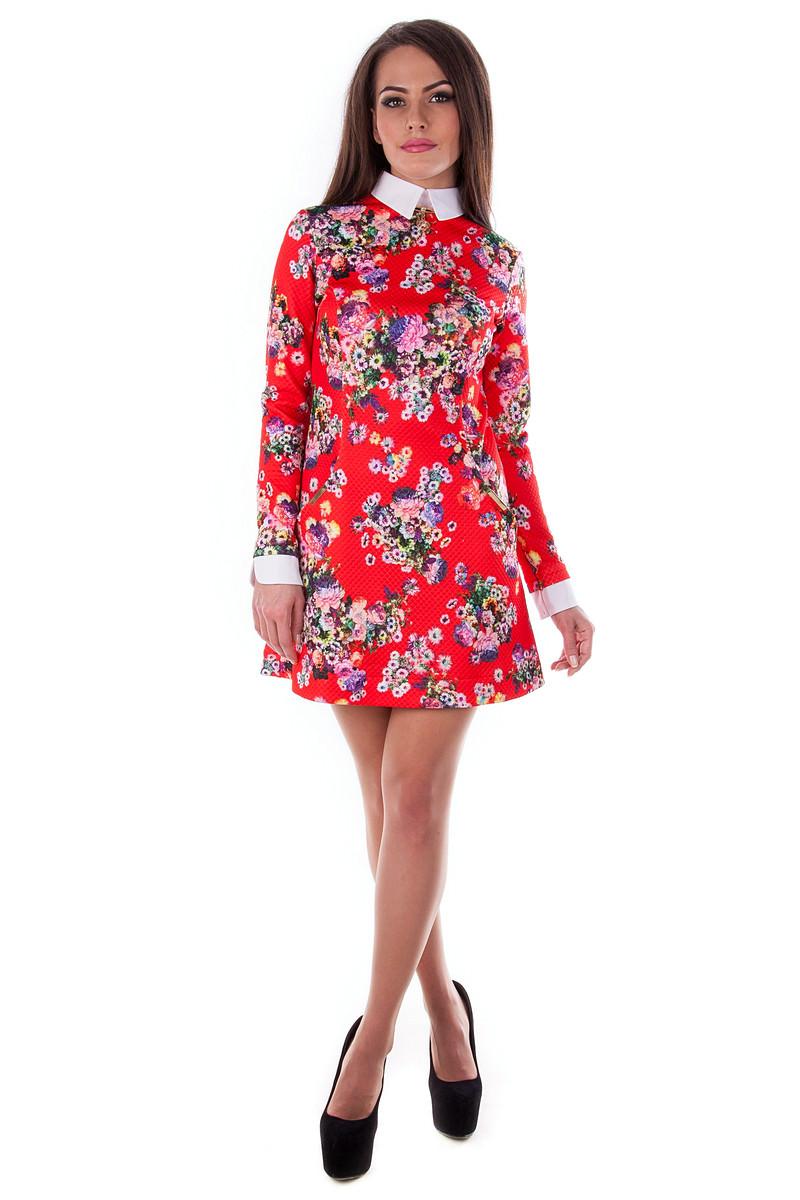 Платья трикотажные оптом от производителя Платье Рига дайвинг принт