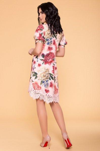 Платье Лера 6487 Цвет: Пудра Пионы