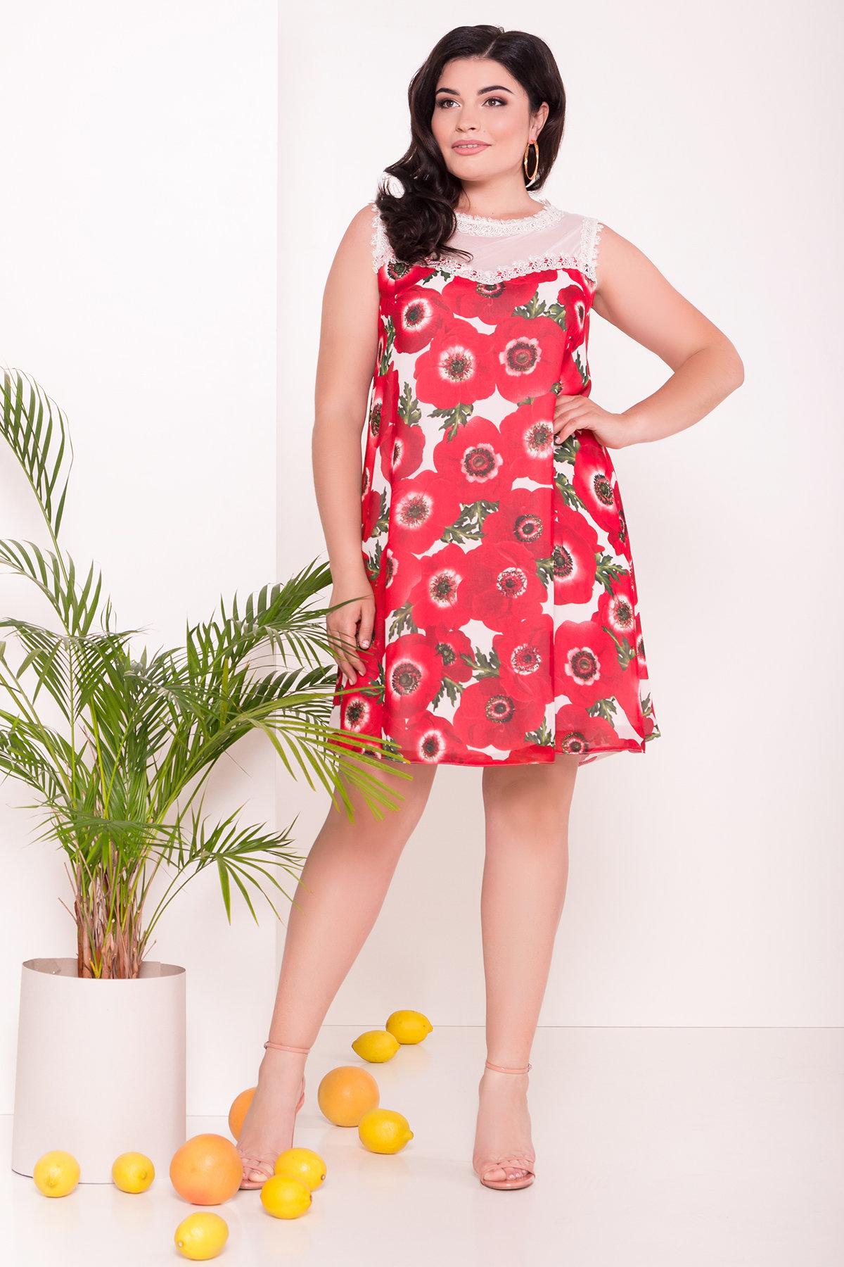 купить нарядное платье большого размера Платье Бриз Donna 7353