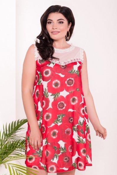 Платье Бриз Donna 7353 Цвет: Маки молоко