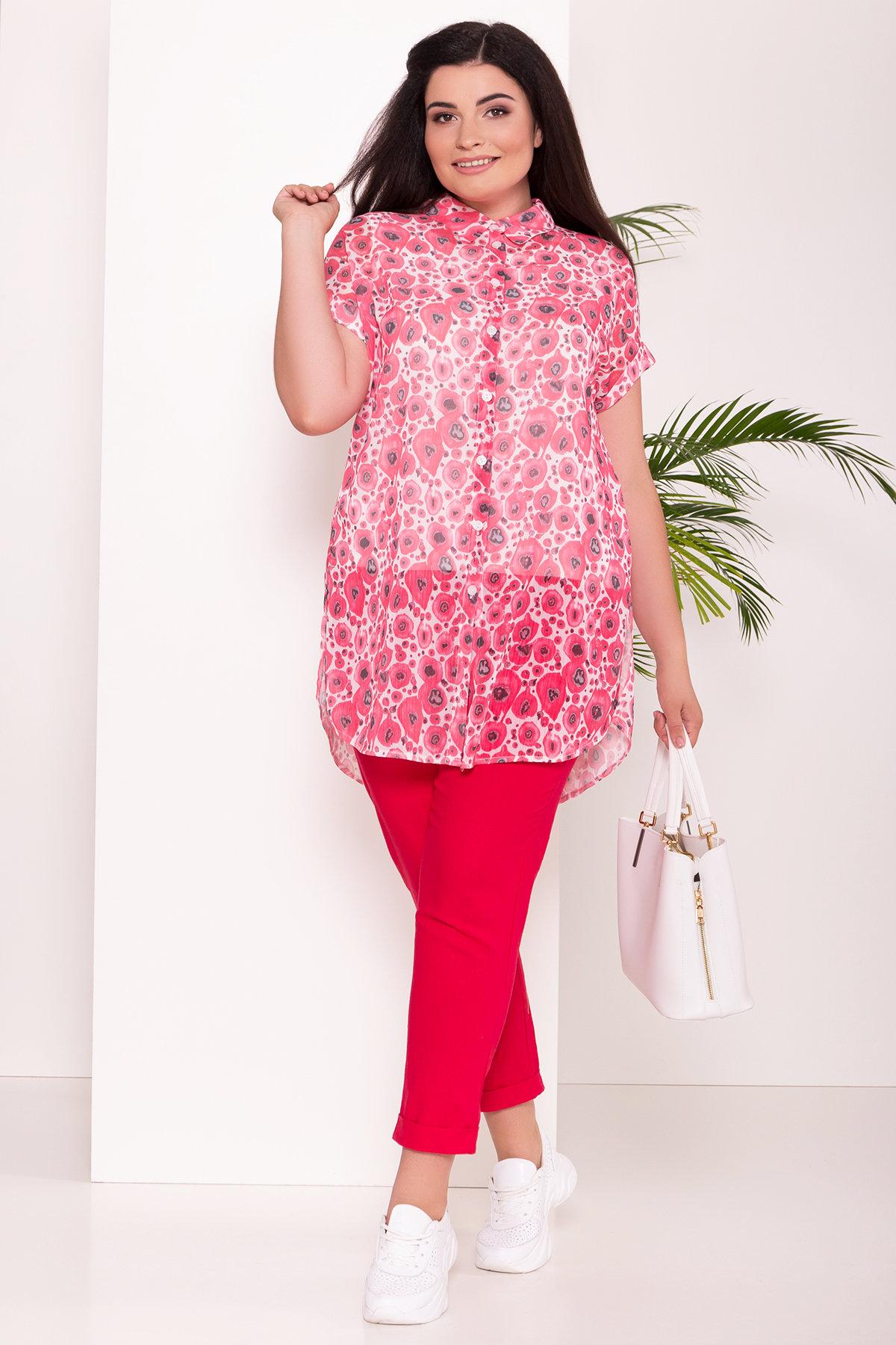 женская одежда больших размеров интернет магазин Украина Костюм тройка Аланья Donna 7567