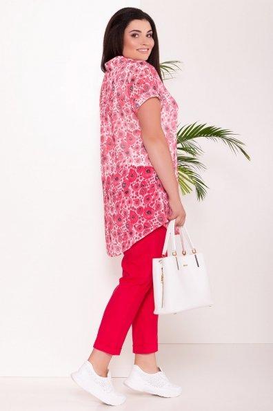 Костюм тройка Аланья Donna 7567 Цвет: Маки красный/мол/крас