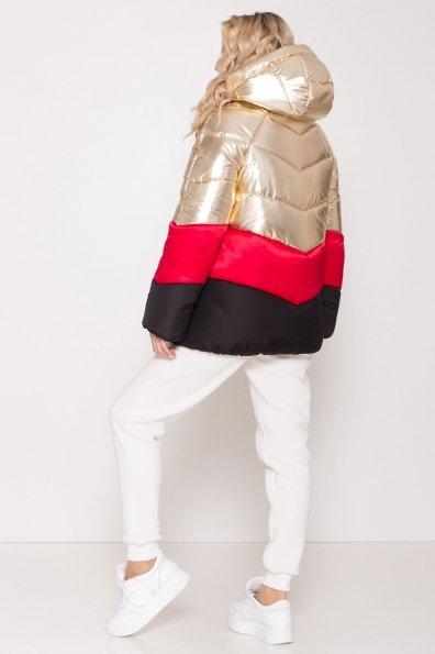 Трехцветный пуховик Австрия 8371 Цвет: Золото/красный/черный