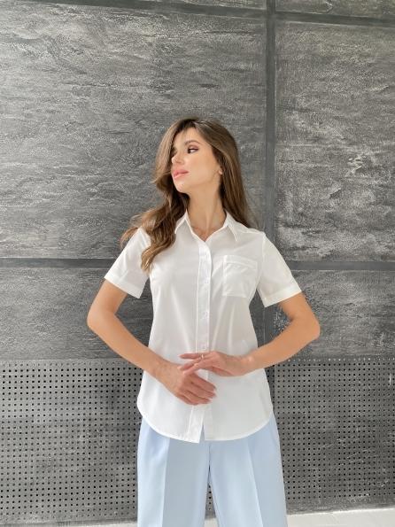 """Купить """"Дженна"""" блуза  софт 11594 оптом и в розницу"""
